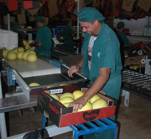 Auxiliar De Produção em Pinheiros