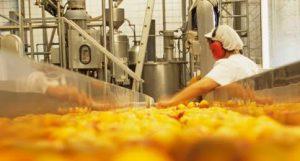 auxiliar setor alimenticio